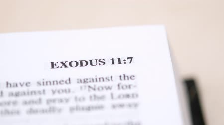 bible study : Reading Exodus Book Of The Bible