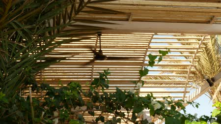 ventilátor : Ceiling fan in a wooden bungalow in the tropics with palm trees background Dostupné videozáznamy