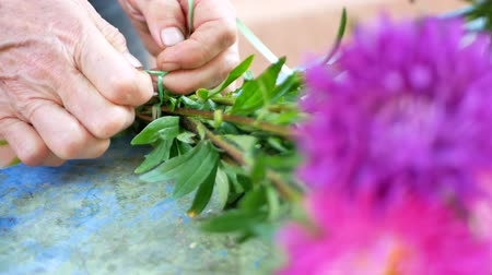 kwiaciarnia : Florist making bouquet with purple or violet, pink michaelmas daisy or aster flower on table for flower shop outdoor