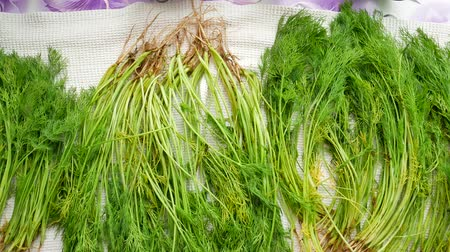 Bunch of fresh organic dill on table. Organic vegetables healthy herb leaf of fennel