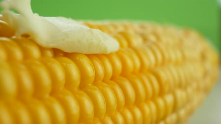 Fresh piece of hot butter melting on ripe yellow fresh corn on cobs at green background