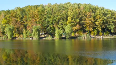 Autumn colorful foliage with lake reflection Stock mozgókép