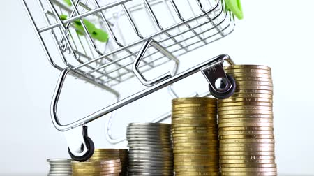 conveniente : Shopping cart or market basket on stack of money coins. Concept of online store Stock Footage