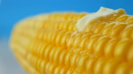 kukoricacső : Hot butter melting on boiled yellow fresh corn on cobs at blue background