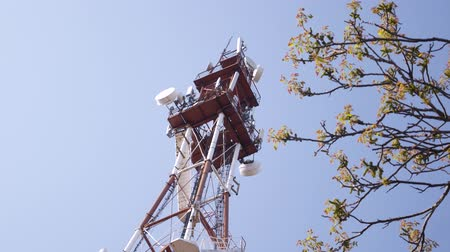 gsm : Transmission tower on sunny summer day with blue sky background
