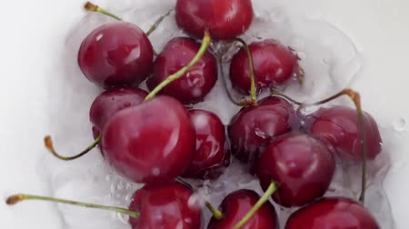 열매 : Ripe Juicy Dark Red Cherry Berry Falling Down in Water. Splash Drop in White Bowl 무비클립
