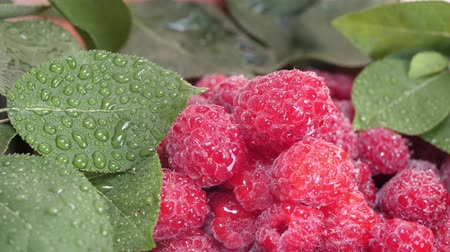framboesas : Fresh and sweet ripe raspberries with water drops and green leaves. Concept of the summer harvest, canning or food preservation