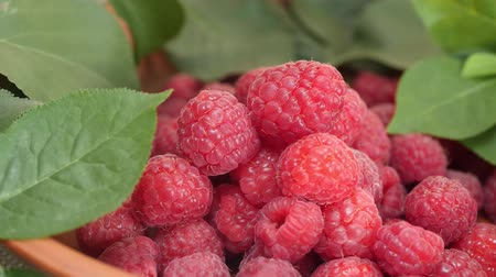 ovocný : Fresh and sweet ripe raspberries and green leaves in brown bowl. Concept of the summer harvest, canning or food preservation