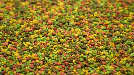 taneli : Multicolored granular fish food for service feeding aquarium pets. Animal care or pet zoo concept Stok Video