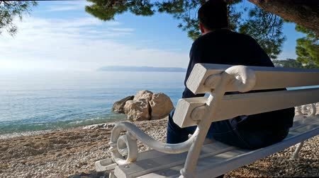 adriyatik : Young caucasian man sitting on wooden bench under pine tree on Adriatic coast and looking at sea Stok Video