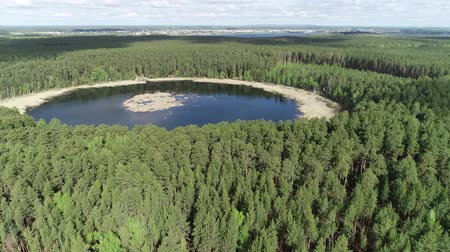 er Lake in the Forrest