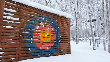 Children play snowballs in winter, they are trying to get into the colorful goal Stock mozgókép