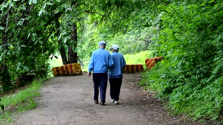 old age, retirement - happy senior couple walking at summer city park 動画素材