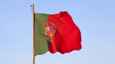 Portugal flag Stok Video