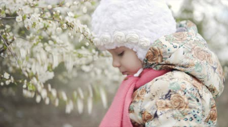 inhaling : A little girl with a delight is inhaling the aroma of a blooming spring tree