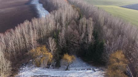 snow on grass : A clearing of trees near the bridge. Take off over colorful trees and fields. A strip of snow on the field. Yellow trees in the middle of winter. Flying over a beautiful baker. Landscape