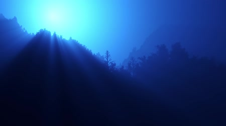 noite : Twinkling sunlight streaks in night forest.