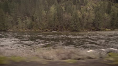 rebirth : River swollen with snow melt on a cloudy spring morning Stock Footage