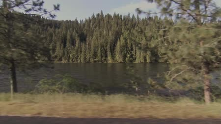 renascimento : Beautiful morning drive in Western Idaho Stock Footage