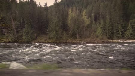rebirth : Rushing river on a spring morning in Idaho Stock Footage