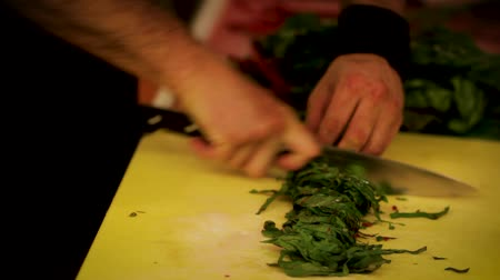 Chef cutting chard at a resort hotel