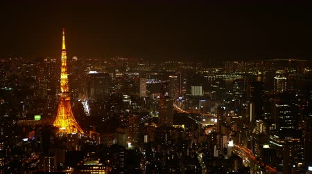night scape : Bird eye view Night view of Tokyo city Stock Footage