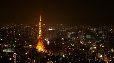 scape : Bird eye view Night view of Tokyo city Stock Footage