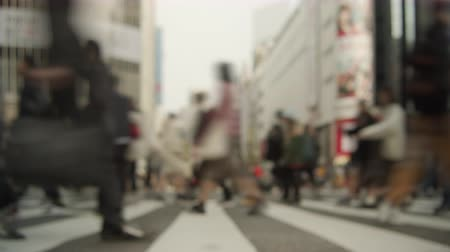 shibuya : Timelapse People walking in the scrambled intersection in Shibuya Stock Footage