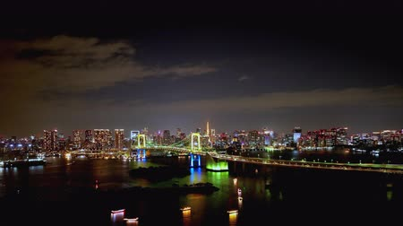 TimeLapse Night view of Tokyo Bay and Tokyo city FIX Stock mozgókép