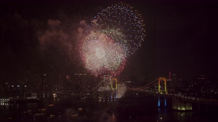 firework display : Japanese fireworks and night view of Tokyo