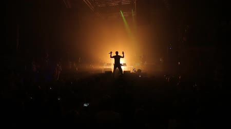 rockstar : Silhouette of rock star on concert