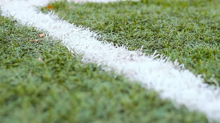 genérico : Close up of the out of bounds  line on a turf football field.