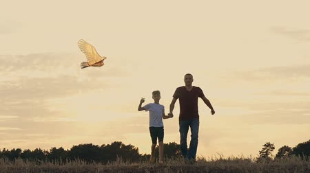 отпрыск : Happy family father and children running in the meadow with a kite in summer at sunset
