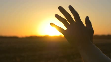 возрождение : Hand at sunset. A mans hand from the window of a car in the suns rays