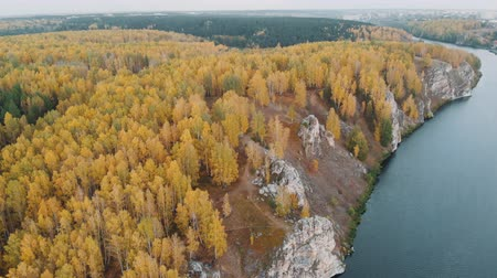 Looking down on amazingly beautiful autumn colors,forests,trees,rock,river aerial drone flyover view. drone shot Stok Video