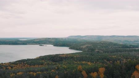 woodland : Flight over the rocks in a beautiful colorful autumn forest, among pines and lakes. drone shot Stock Footage