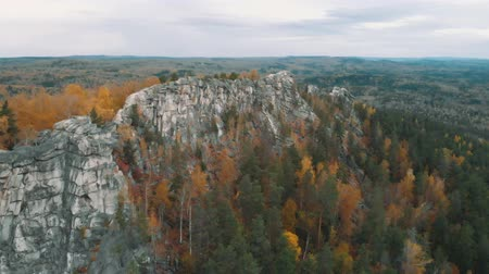 Flight over the rocks in a beautiful colorful autumn forest, among pines and lakes. drone shot Stok Video
