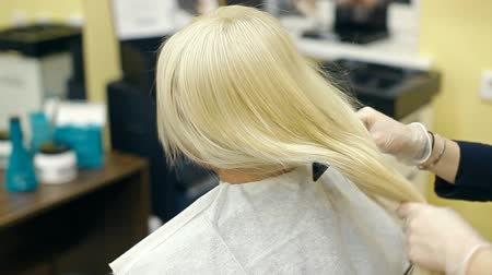 blond vlasy : A hairdresser is combing a blonde
