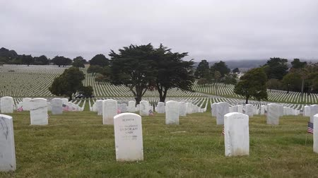 gravestone : Memorial Day observance at Golden Gate National Cemetery in San Bruno, California.