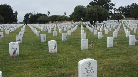 veterano : Memorial Day observance at Golden Gate National Cemetery in San Bruno, California.