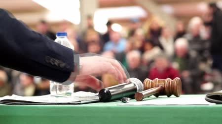 solicitor : auction bid sale trial mallet gavel, video hd 1920x1080