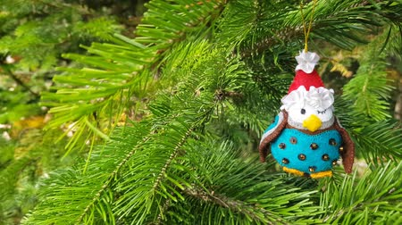 önemsiz şey : Handmade bauble figurines of owl. Christmas felt decoration on a spruce branch. Holiday video 4k background with a copy space. Stok Video