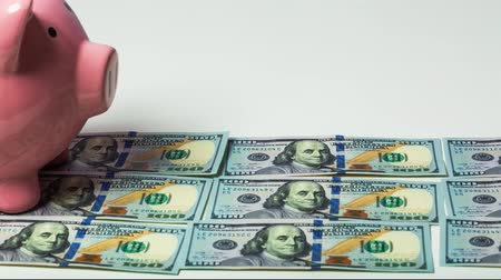 bancos : Piggy bank marching across 100 dollar bills Stock Footage