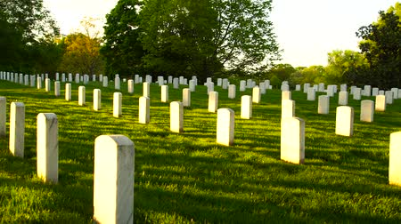 veterano : Arlington National Cemetery panning shot at sunset Stock Footage