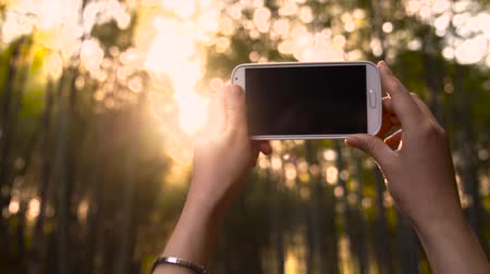 боке : Woman holding her smartphone up to the sunset through forest to take a picture or video Стоковые видеозаписи