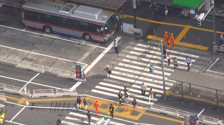 crosswalk : Aerial view of a bus terminal in Shibuya, Tokyo, Japan Stock Footage
