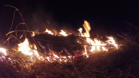 вереск : Video flames burning dry straw field Стоковые видеозаписи