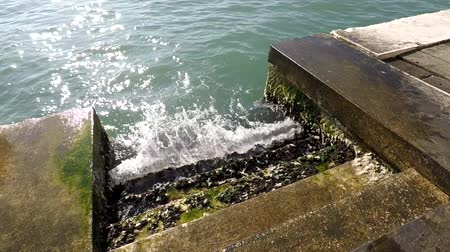 Waves strike steps in the sea, green mold, quay in Venice, Italy Vídeos