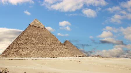 wielbłąd : Great Pyramids of Giza. Cairo. Egypt. Time Lapse.