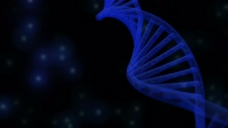 medicals : 3D semitransparent DNA chain rotation abstract on blue background. Rotating strand of DNA.